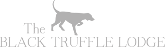 The Black Truffle Lodge Pettino Umbria